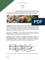 31_hongos_general_texto.pdf