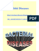 (2)+Rabbit_diseases_JPG.pdf