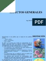 Clase 1 Aspectos generales.ppt