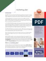 Developing a Marketing Plan - NIVEA