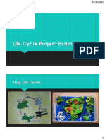 life cycle project examples