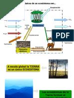 Zonas Biogeiograficas y Zonas Climaticas