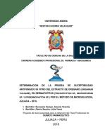 Universidad Andina Tesis Original