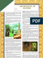 Architects in Nature-Harun Yahya