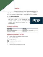 335811698 Caso de Auditoria