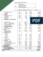 Costos de Produccion de Cebolla Excel