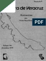 Flora de Veracruz Aizoaceae