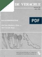 Flora de Veracruz Balanophoraceae