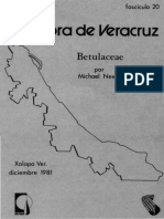 Flora de Veracruz Betulaceae