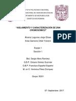 Aislamiento-DNA Reporte Sep 2017