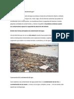 Cómo Se Produce La Contaminación Del Agua