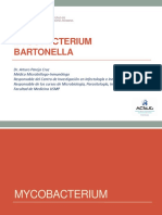 C9 Micobacterium Bartonella