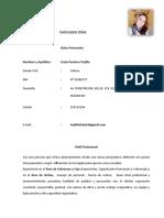 CV Linda Panduro Trujillo