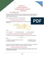 PRACTICA1FIS102LAB