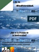 La Perdida de La Biodiversidad-clase 2
