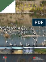 UT9_-_La_Mineria_y_el_Medio_Ambiente.pdf