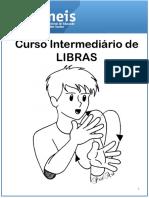 PDF-Intermediario Introducao Parametros