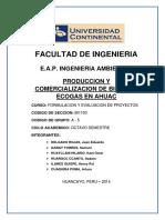 Proyecto de Inversion Ecogas