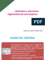Control Elementos y Estructura Organizativa de Una Empresa