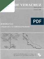 Flora de Veracruz Burseraceae