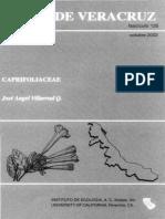Flora de Veracruz Caprifoliaceae