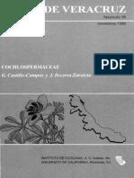 Flora de Veracruz Cochlospermaceae