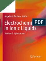 Electrochemistry in Ionic Liquids Vol 2