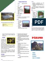TRIPTICO-DE-PARAMO-docx.docx