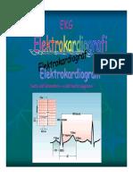 Basic ECG