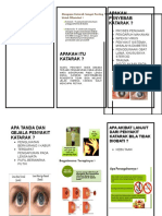 Leaflet Katarak