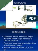 Powerpoint Reproduksi Sel