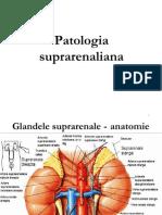 11. Patologia suprarenaliana
