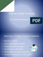 4.4 Peran Vitamin & Mineral Pada Tumbang Dan Degeneratif (Dr. Joko)