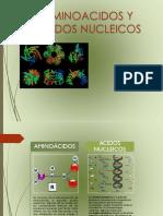 Aminoacidos y Acidos Nucleicos.pptx