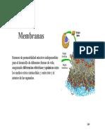 Membrana y Fotosíntesis
