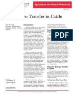 Transfer Embrio in Cattle