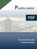 Entorno Urbano Del Municipio de Puebla-Vf
