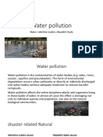Water Pollution Vale y Naya