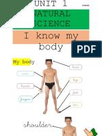 Tema 1 Body Parts