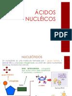 1. acido nucleicos