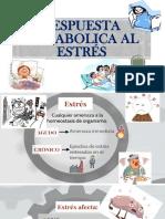 RESPUESTA METABOLICA AL ESTRÉS.pptx