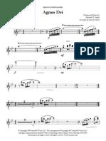 01 Agnus Dei - Flute 1 & 2.pdf