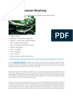 Klasifikasi Tanaman Binahong.docx