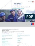 Diccionario Competencias Liceos TP Digital