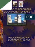 7. Pruebas Psicológicas de Carácter Forense