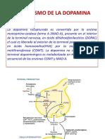 Catabolismo de La Dopamina