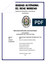 RECOLECCION DE GAS NATURAL.pdf