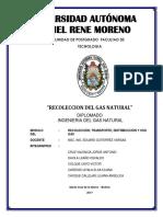 RECOLECCION DE GAS NATURAL.pdf