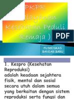 power_poin_PKPR_(_Pelayanan_Kesehatan_Peduli_Remaja_).ppt
