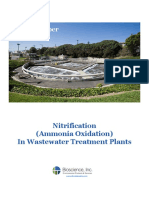 Nitrification Ammonia Oxidation in Wastewater Treatment Plants 1 2